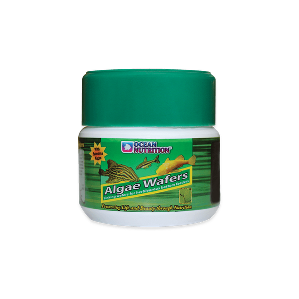 Ocean Nutrition Algae Wafers